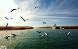 Juyan Lake